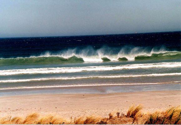 Strand von Cape Town