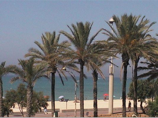 Strand von Playa de Palma