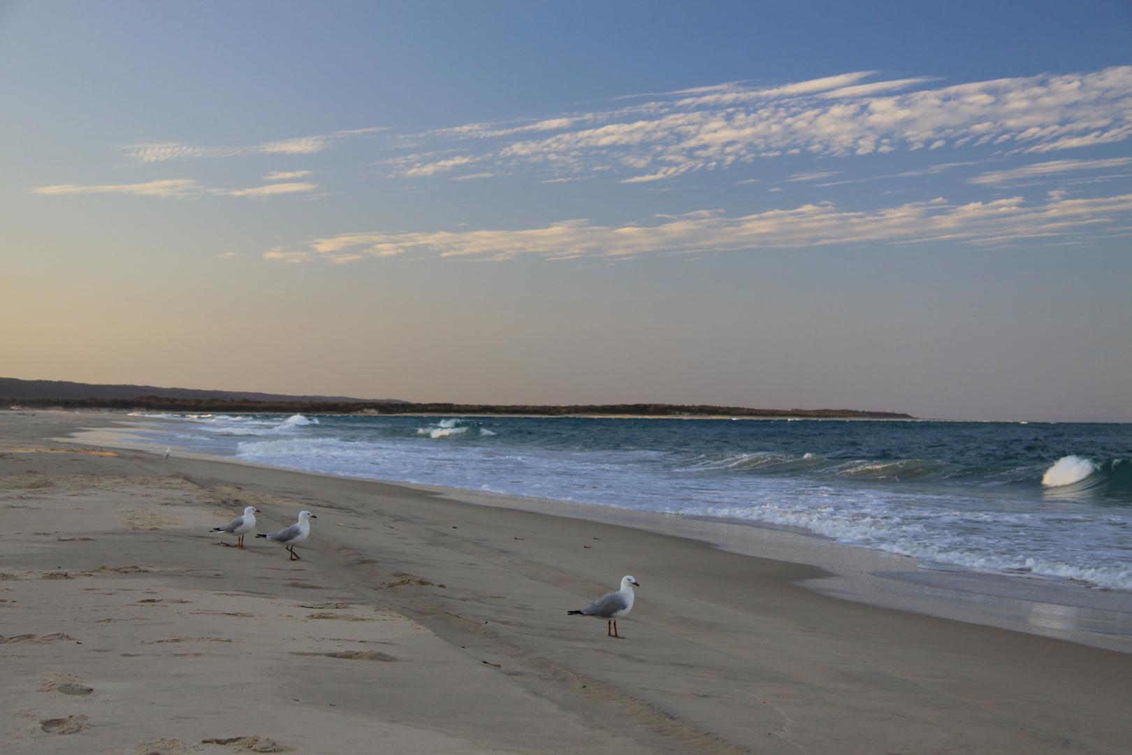 Strandabschnitt vor der Insel Fraser Island... - Australien, Queensland