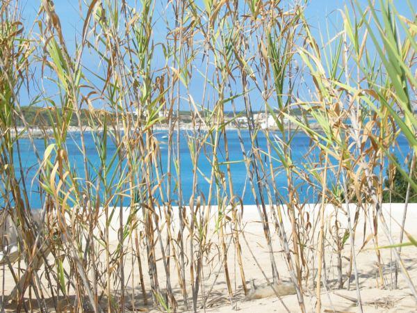 Strandansichten auf Formentera