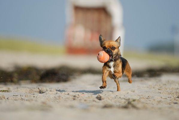 Strandballspiel II