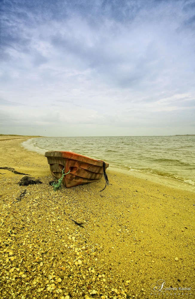 Stranded and forgotten