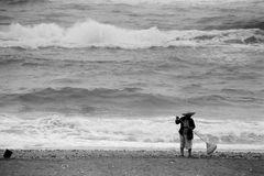 Strandfegerin