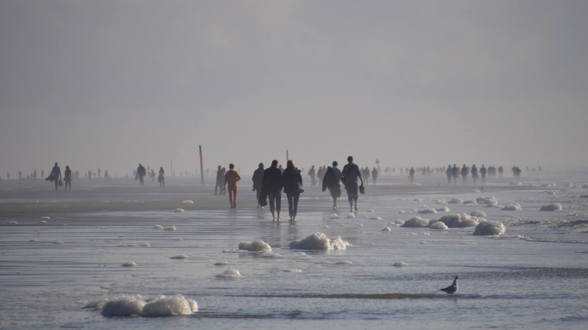 Strandgang in Sankt Peter-Ording