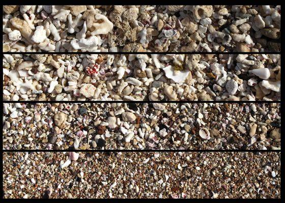 Strandgut Aegypten 2012
