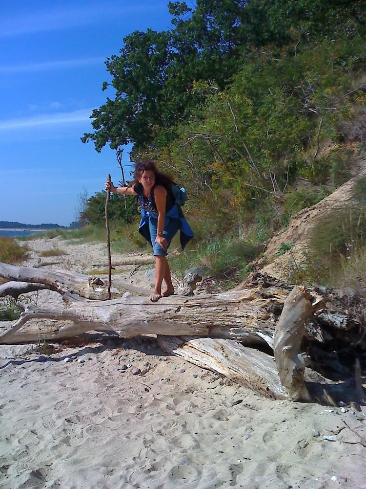 Strandgut gefunden