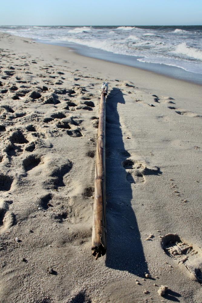 Strandgut II