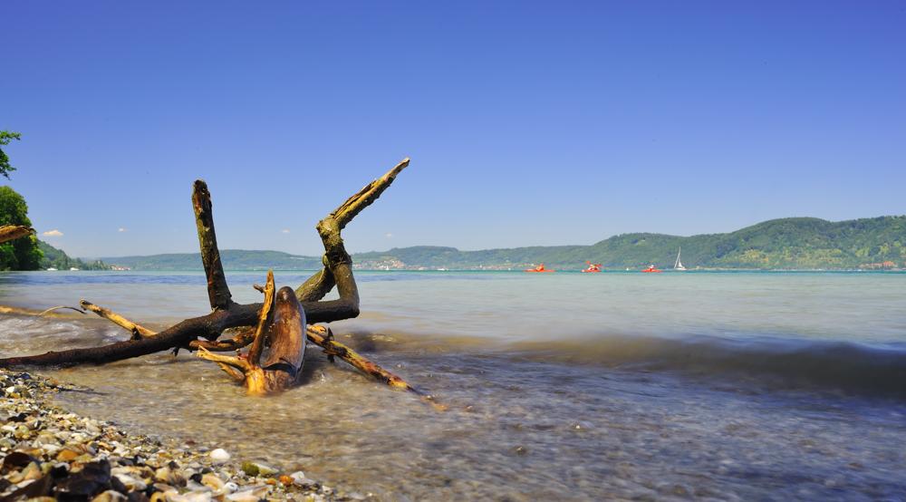 Strandgut mit Paddler