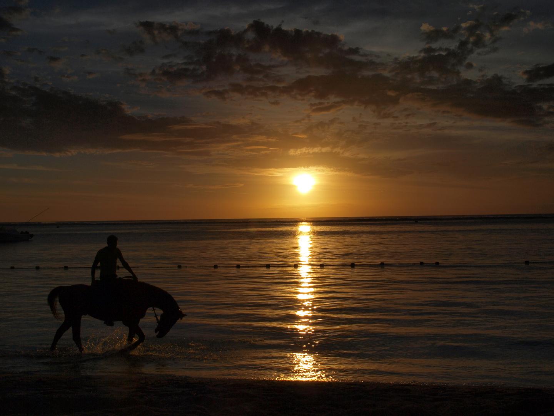 Strandidyll mit Reiter