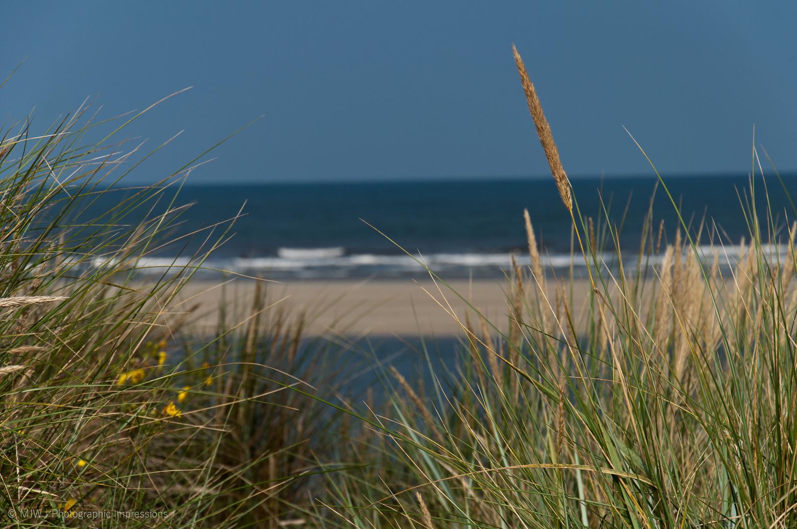 Strandimpressionen 1 - Langeoog