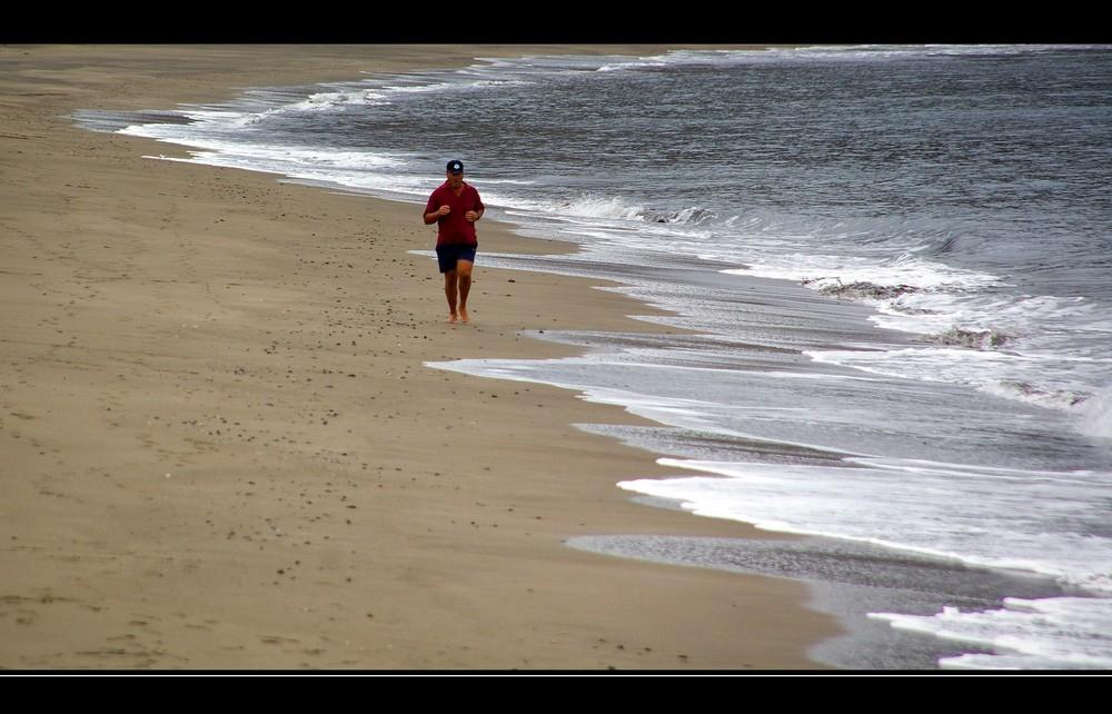 Strandläufer 1.1