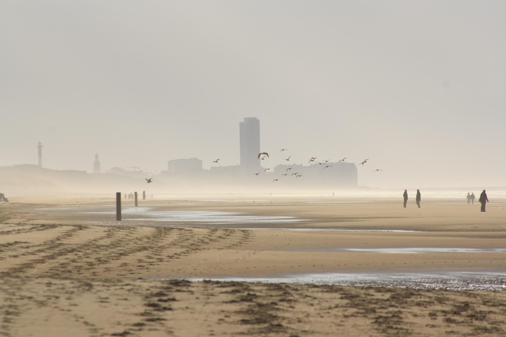 Strandleben im Winter