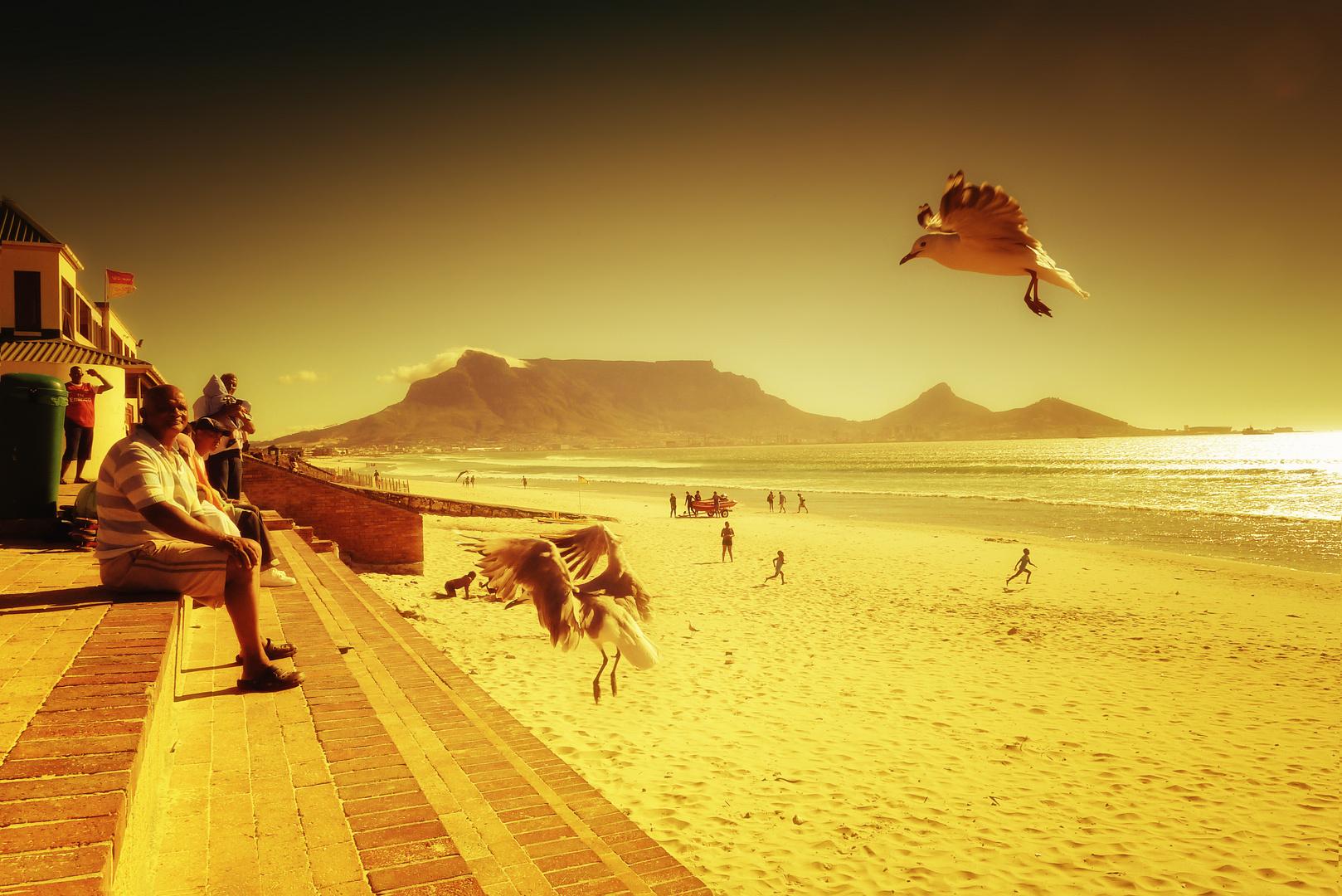 Strandleben in Kapstadt