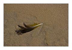 Strandlicher Kleinkram