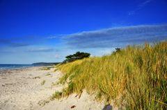 Strandoase Hiddensee