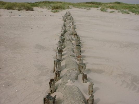 Strandschutz