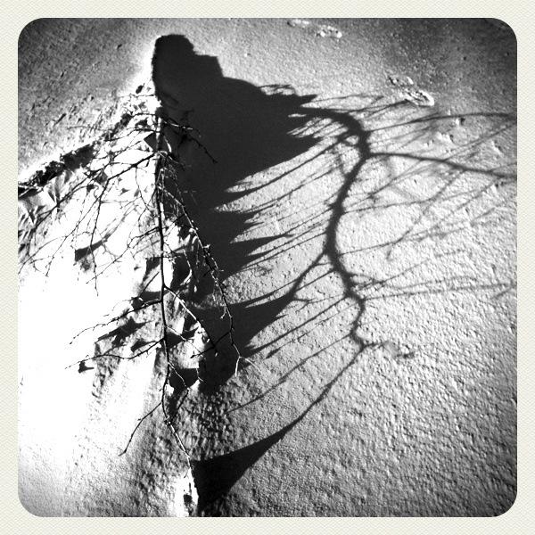 Strandspaziergang  15.1. Wangerooge