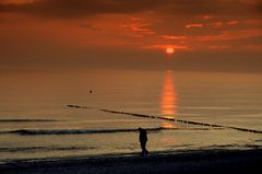Strandspaziergang auf Hiddensee