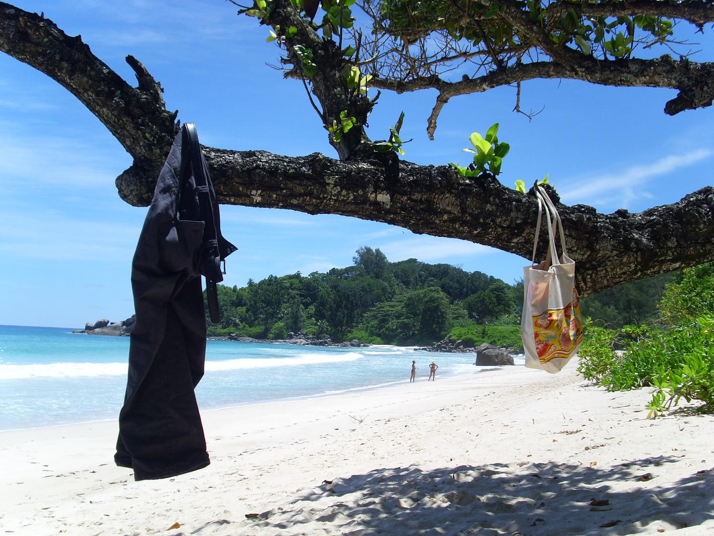 Strand(stil)leben