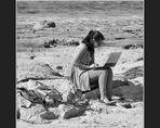 Strandsurfen