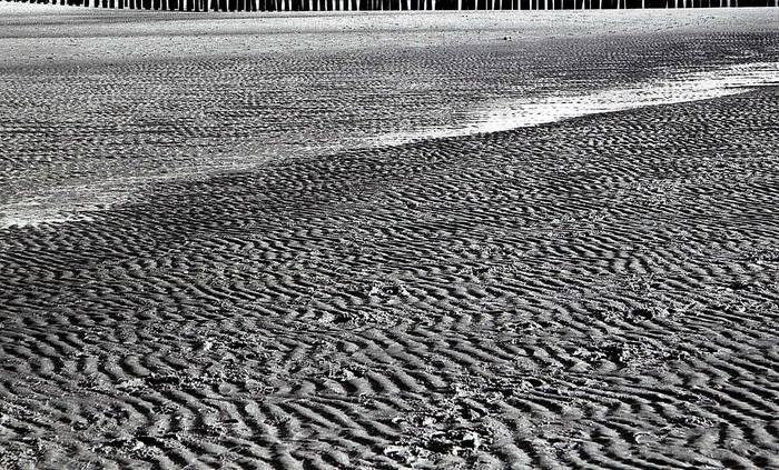 Strandwellen