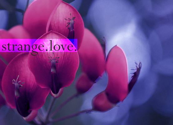 strange.love.