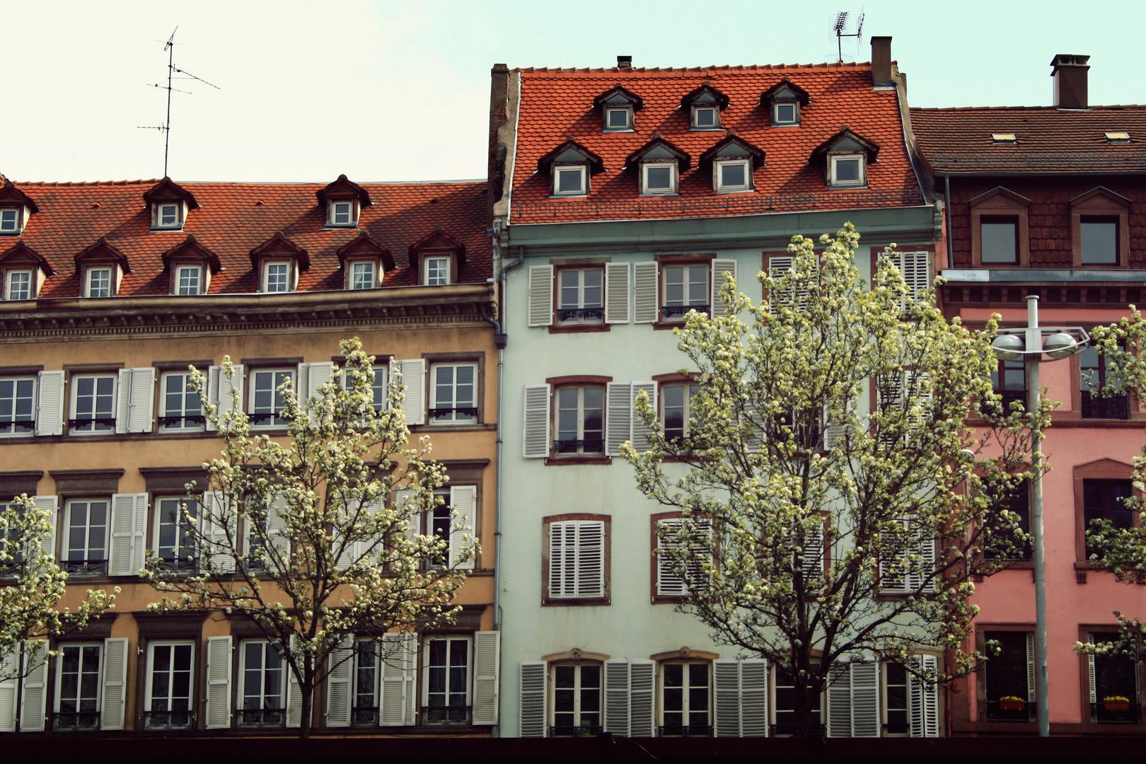 strasbourg #2