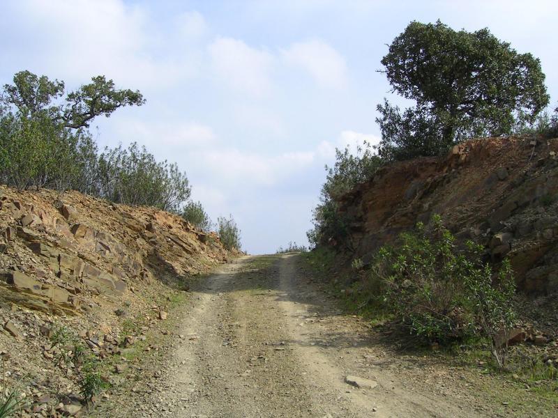Straße an der Landschaft