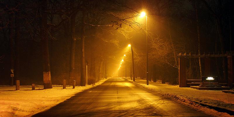 Straße durch den Park