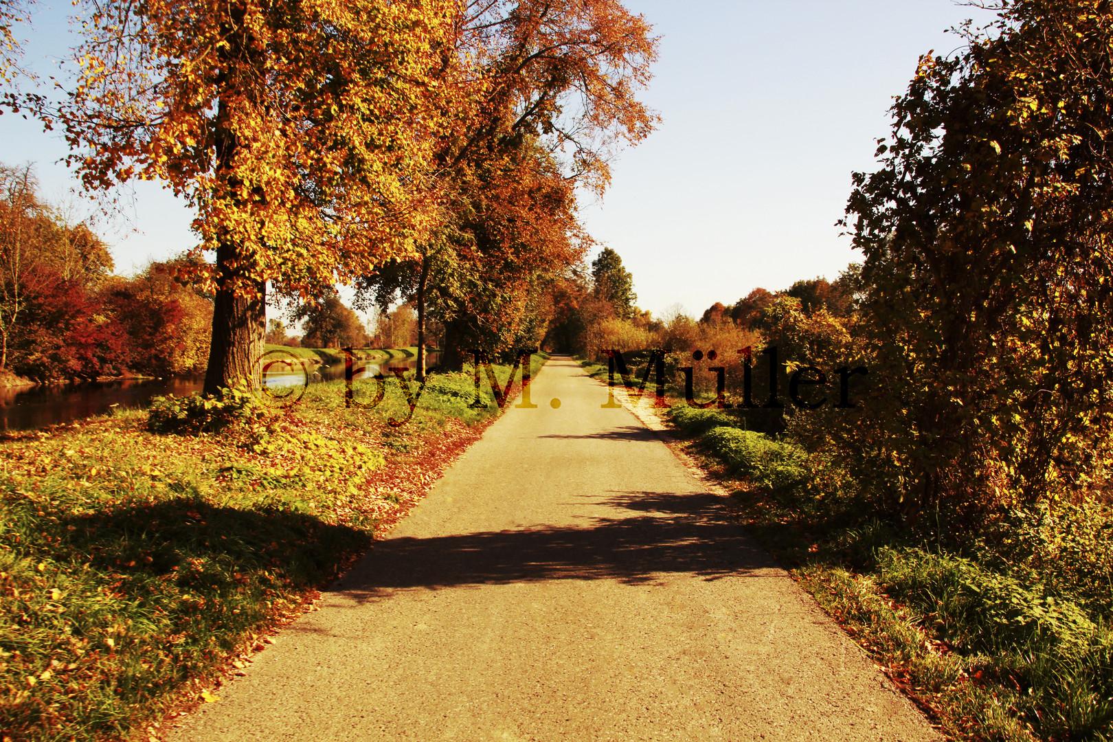 Straße im Herbst