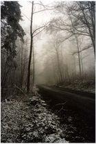Strasse im Nebel