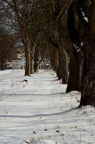Straße im Schnee