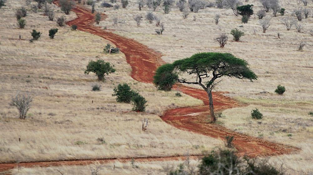 Straße im Tsavo