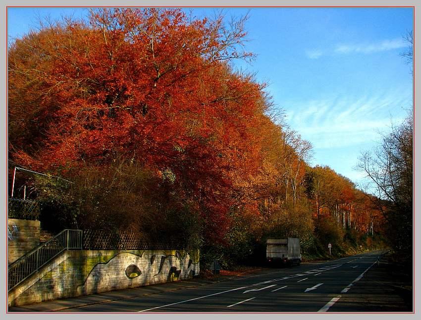 Strasse in den Herbst