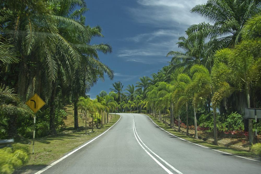 Strasse in der Nähe von Merang, West-Malaysia