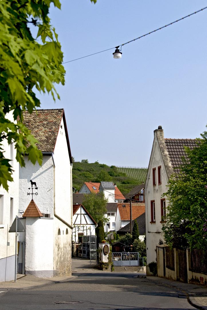 Strasse nach Bodenheim