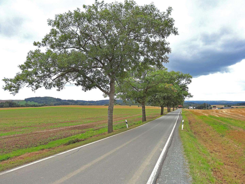 Straße nach Gansgrün an der Talsperre Pöhl
