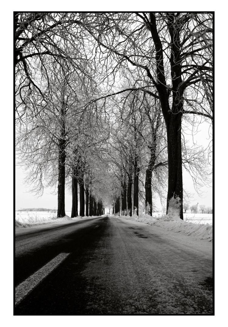 Straße nach Warthe, Lieper Winkel