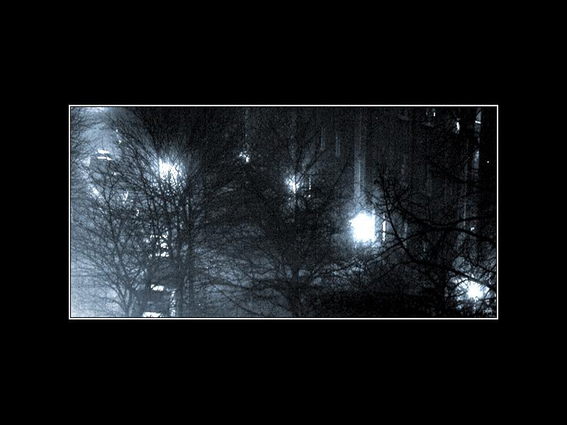 Straße, Nacht und Winter