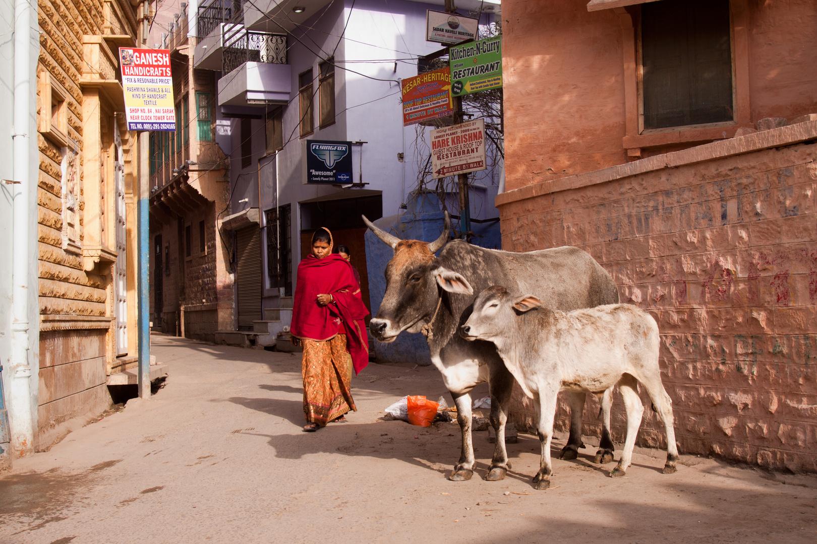 Straße von Jodhpur
