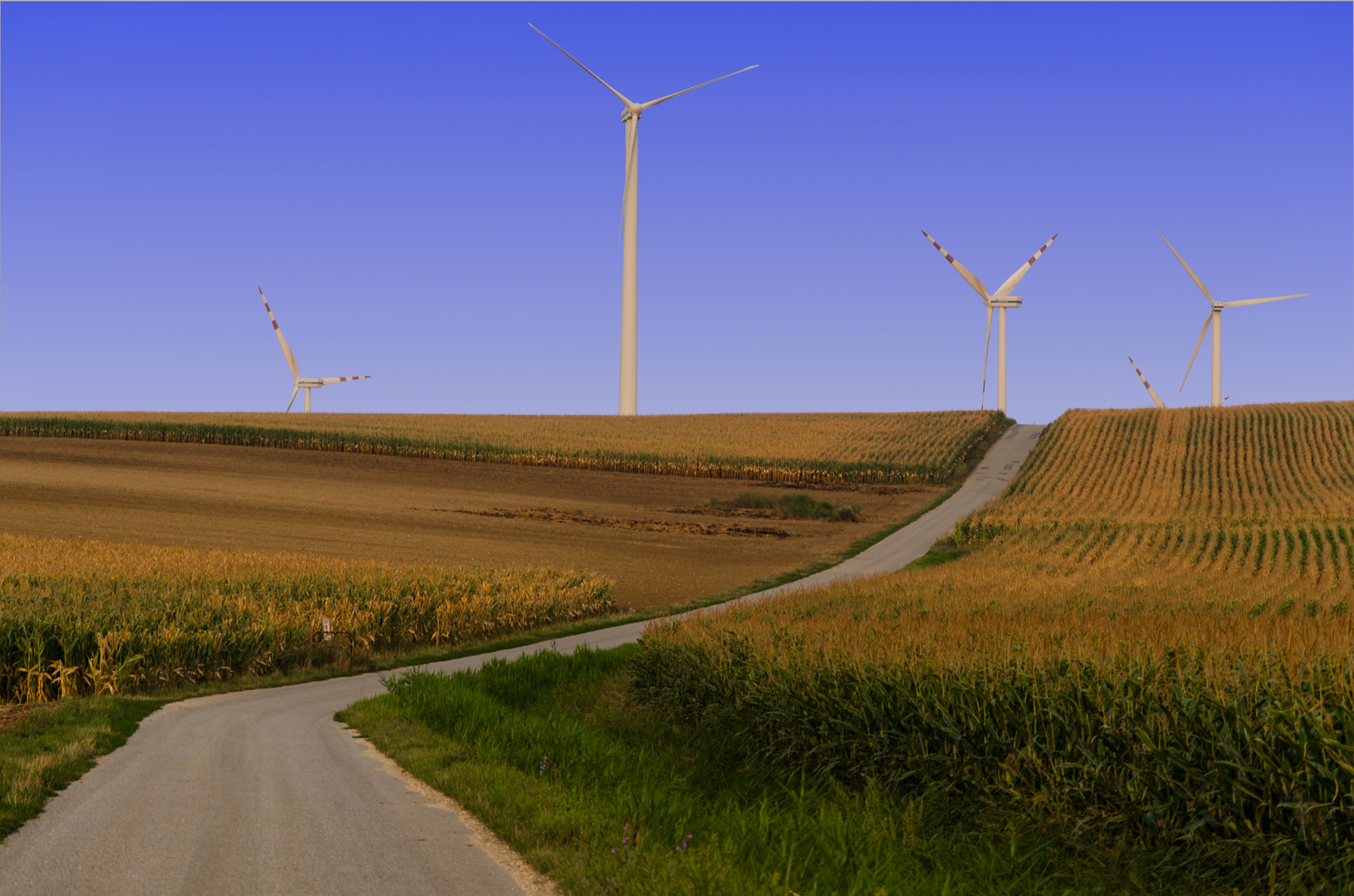 Straße zu den Windrädern