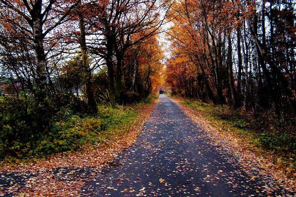 Straße zum Soonwald