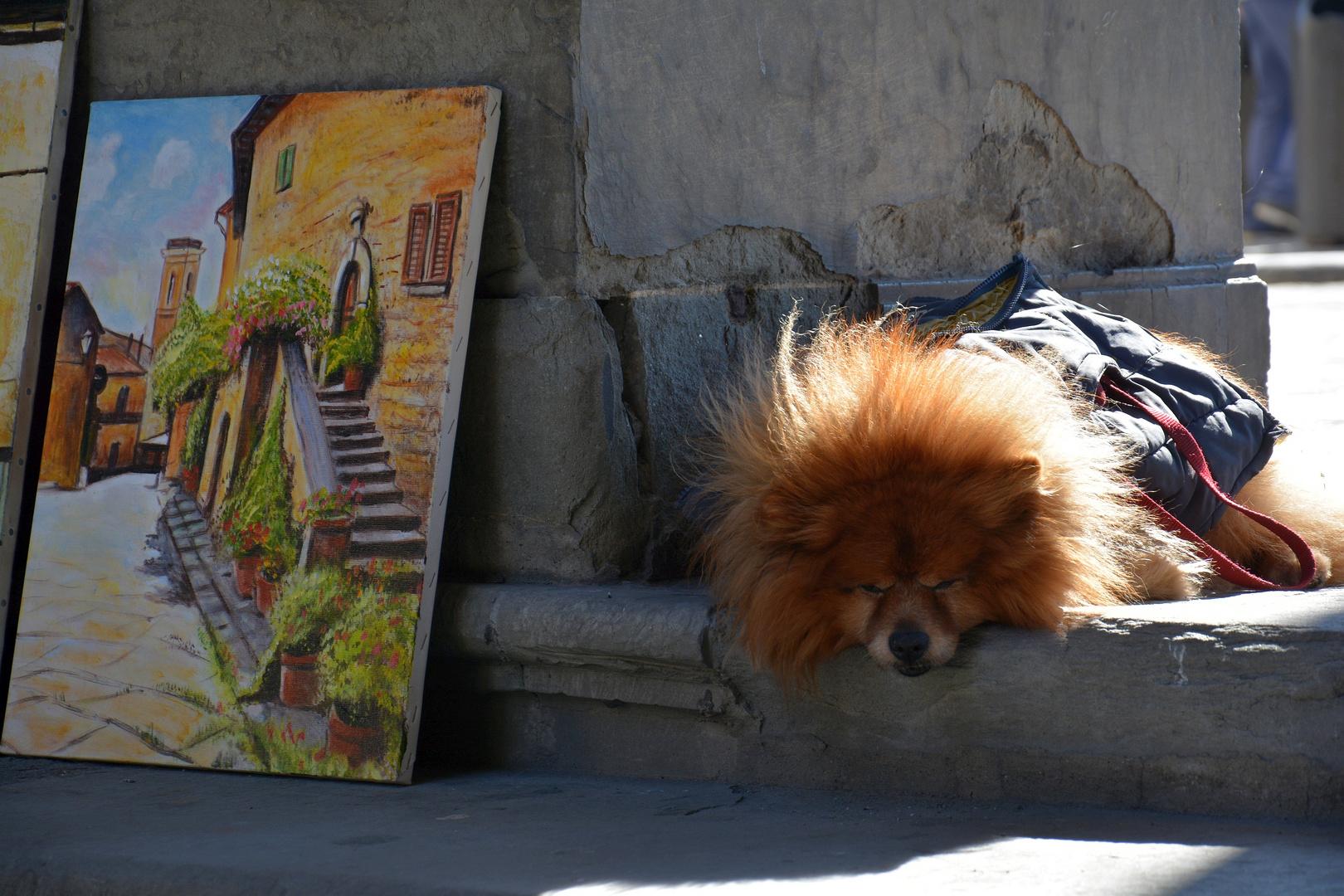 Strassenkünstler in Florenz