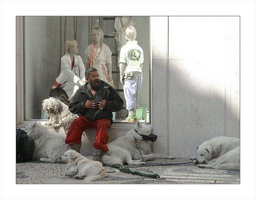 Strassenszene in Lissabon (3) ein Weiser unter Weißen