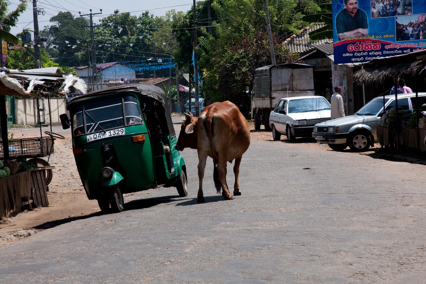 Strassenverkehr in Sri Lanka