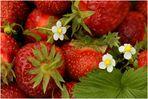 Strawberry ...