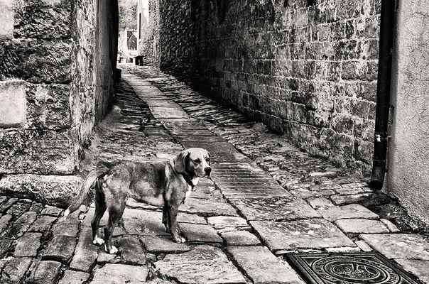 Street ohne Menschen:-)