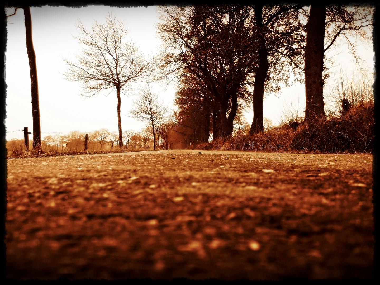 Street to nowhere....
