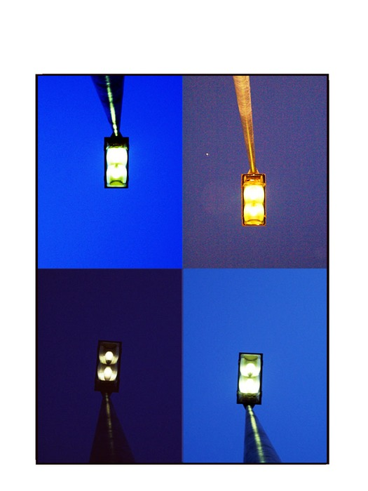 :: streetlight ::