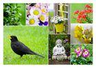 Streifzug durch den Garten ;-)